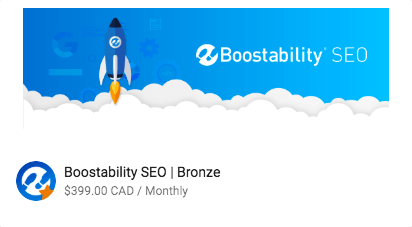 SEO Bronze Package